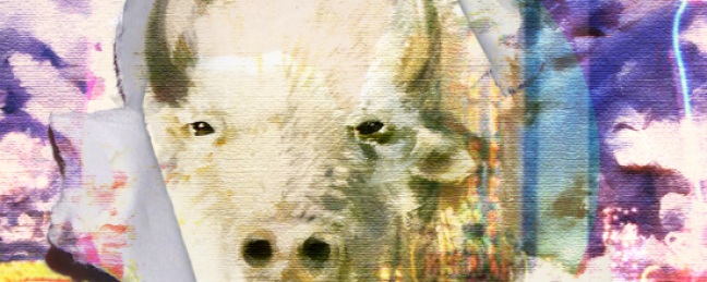 "AiM ""7 AM"" [VIDEO] x ""The Great White Buffalo"" [ALBUM]"