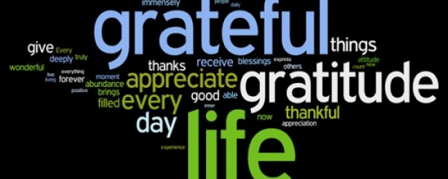 """Sullee J """"The Importance of Gratitude"""" [ARTICLE]"""