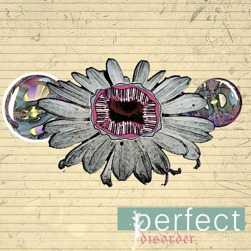 Perfect Disorder(Cover)