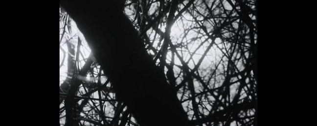 "Moe Pope ft. Tea Leigh ""Sunday Morning""/""Cocaine"" ft. Rain [VIDEO]"